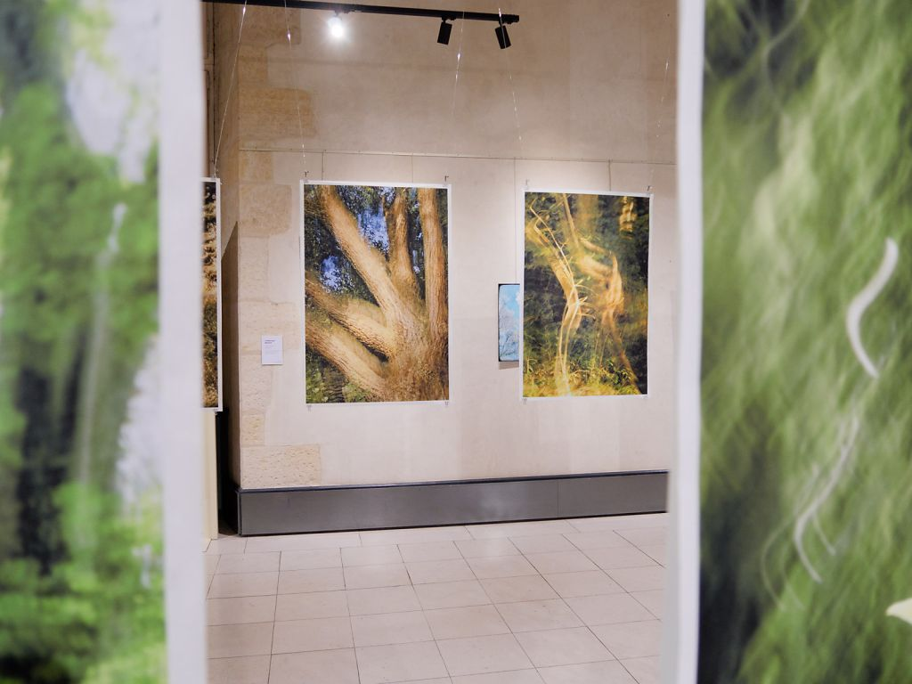 View into the exhibition