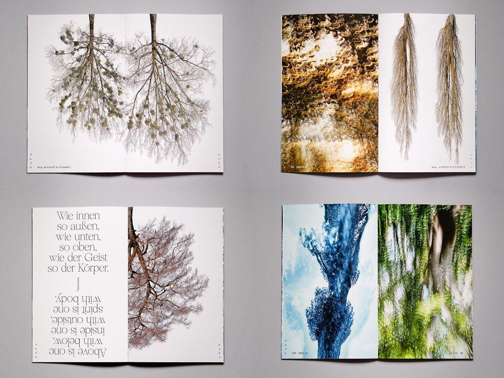 Buch-4-Doppelseiten-m.jpg